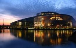 Az év magyar európai parlamenti képviselői 2010-2011