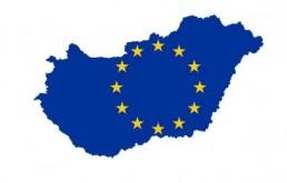 A magyar kormány és a magyar pártoknak az EP-ben, szimbolikus európai kérdésekben képviselt álláspontjának összehasonlítása