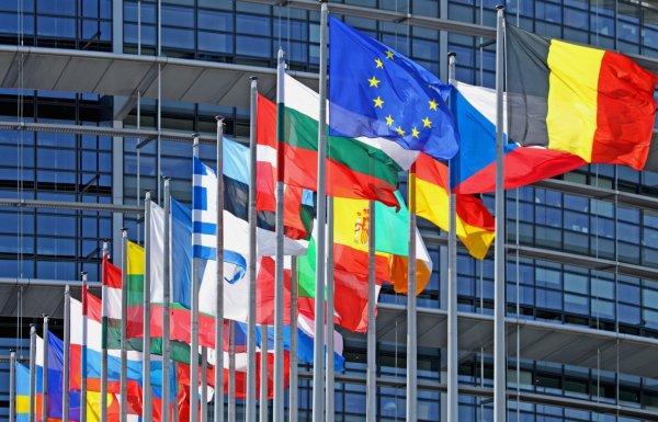 A magyar EP-képviselők tevékenysége a 2014-2019-es ciklus félidejében