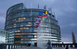 Közép-európai EP-képviselők és szerepeik