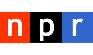 Bíró-Nagy András az amerikai NPR rádiónak nyilatkozott az európai szélsőjobboldali populista pártok növekvő népszerűségéről